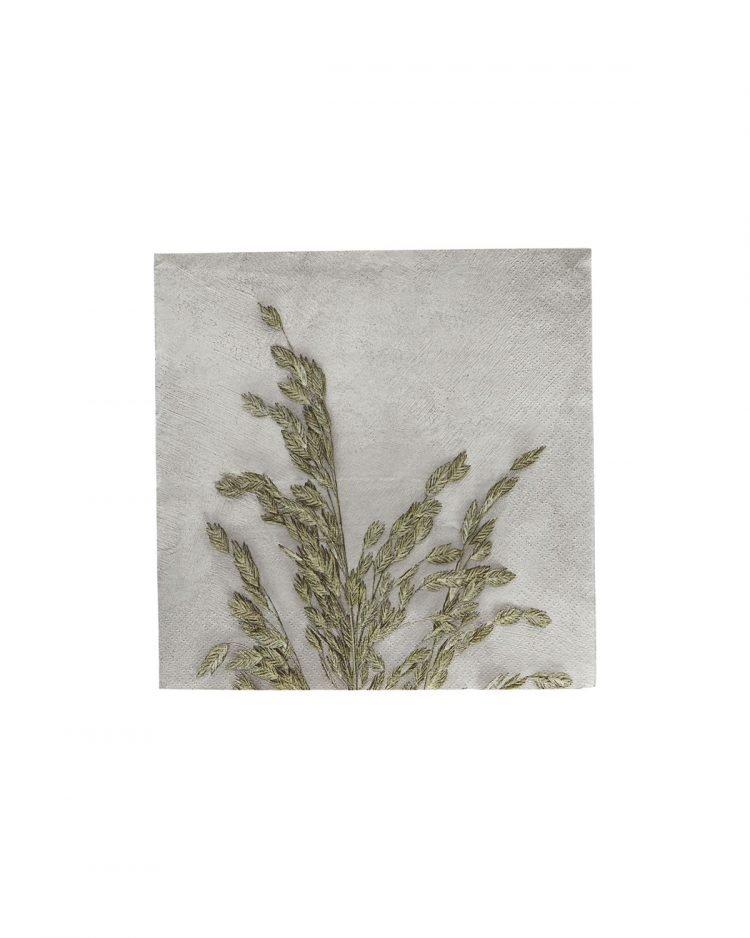 Servietten, Grass